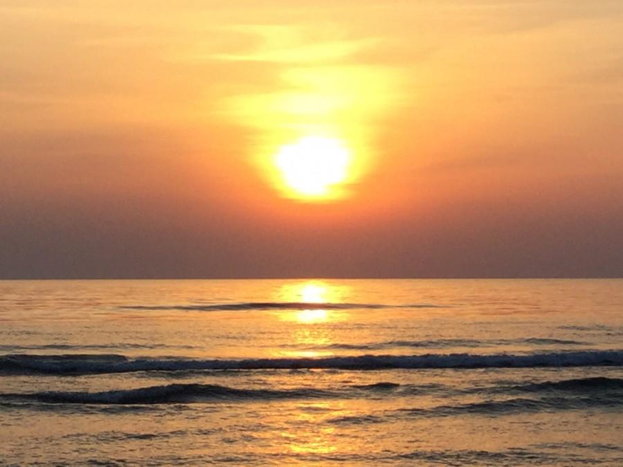 No.81  和歌山県 銅屋昌男さん「Sunset」